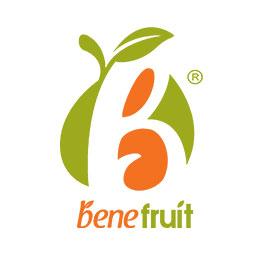 Dried Orange Bene Fruit, Dried Mango Bene Fruit, Dried ...